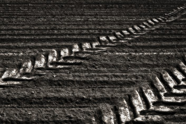 traces-tracteur-champ-terre
